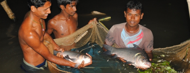 Fishing project in Bangladesh