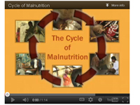 Cycle of Malnutrition video